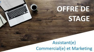 Assistant(e) Commercial(e) et Marketing